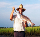 St augustine fishing charters contact information for St augustine fishing charter